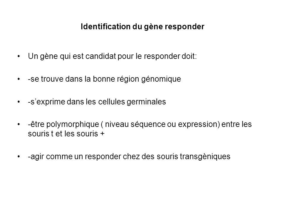 Identification du gène responder