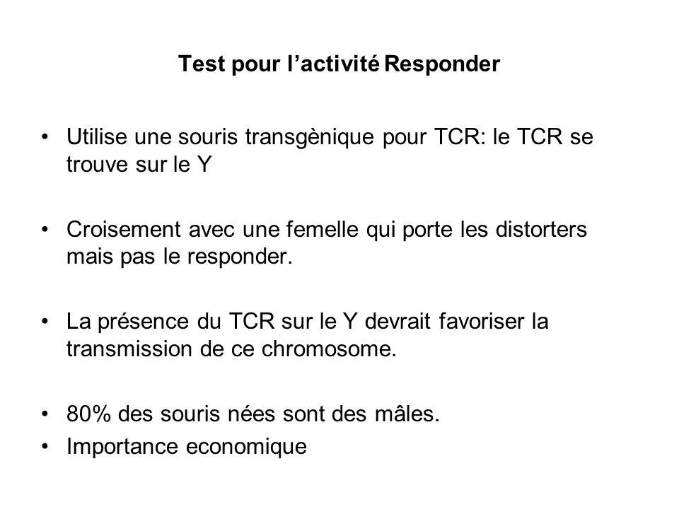 Test pour l'activité Responder