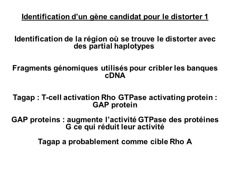 Identification d'un gène candidat pour le distorter 1