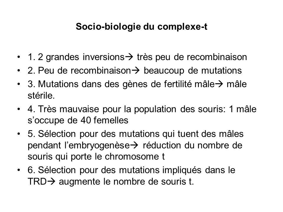 Socio-biologie du complexe-t