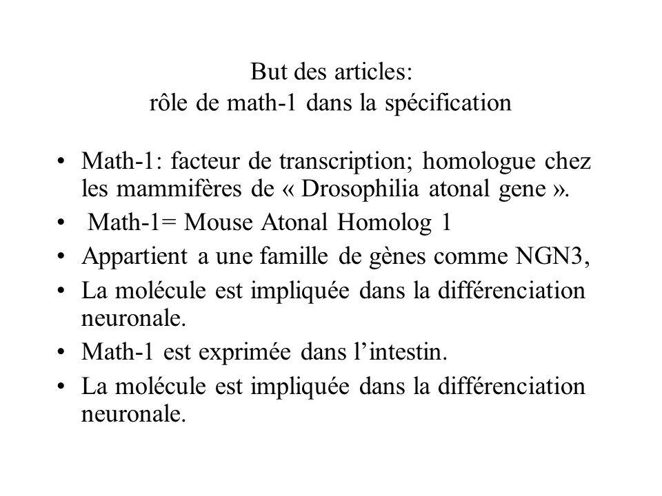 But des articles: rôle de math-1 dans la spécification