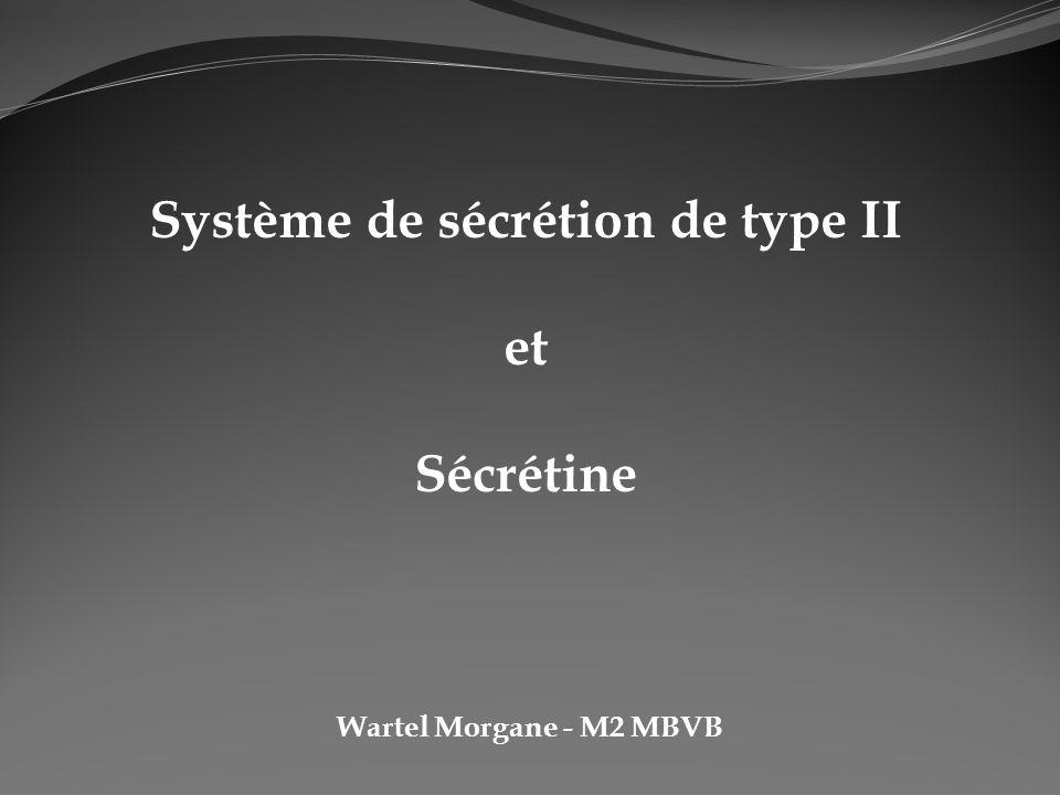 Système de sécrétion de type II