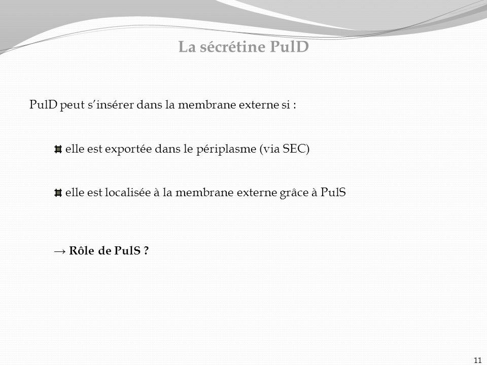 La sécrétine PulD PulD peut s'insérer dans la membrane externe si :