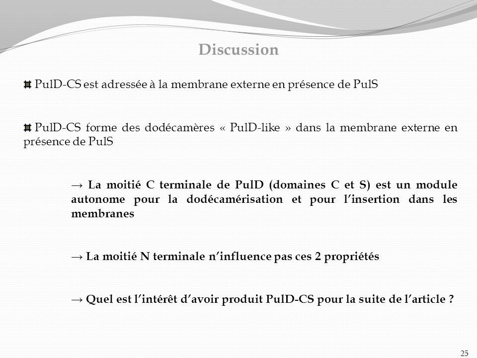 Discussion PulD-CS est adressée à la membrane externe en présence de PulS.