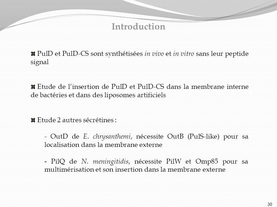 Introduction PulD et PulD-CS sont synthétisées in vivo et in vitro sans leur peptide signal.