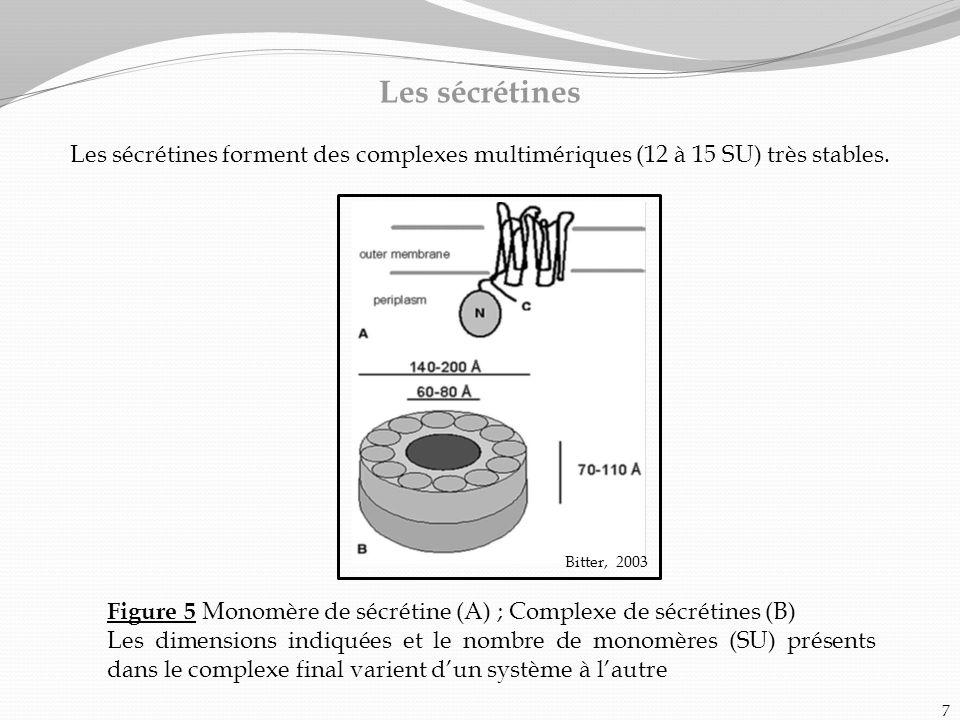 Les sécrétines Les sécrétines forment des complexes multimériques (12 à 15 SU) très stables. Bitter, 2003.