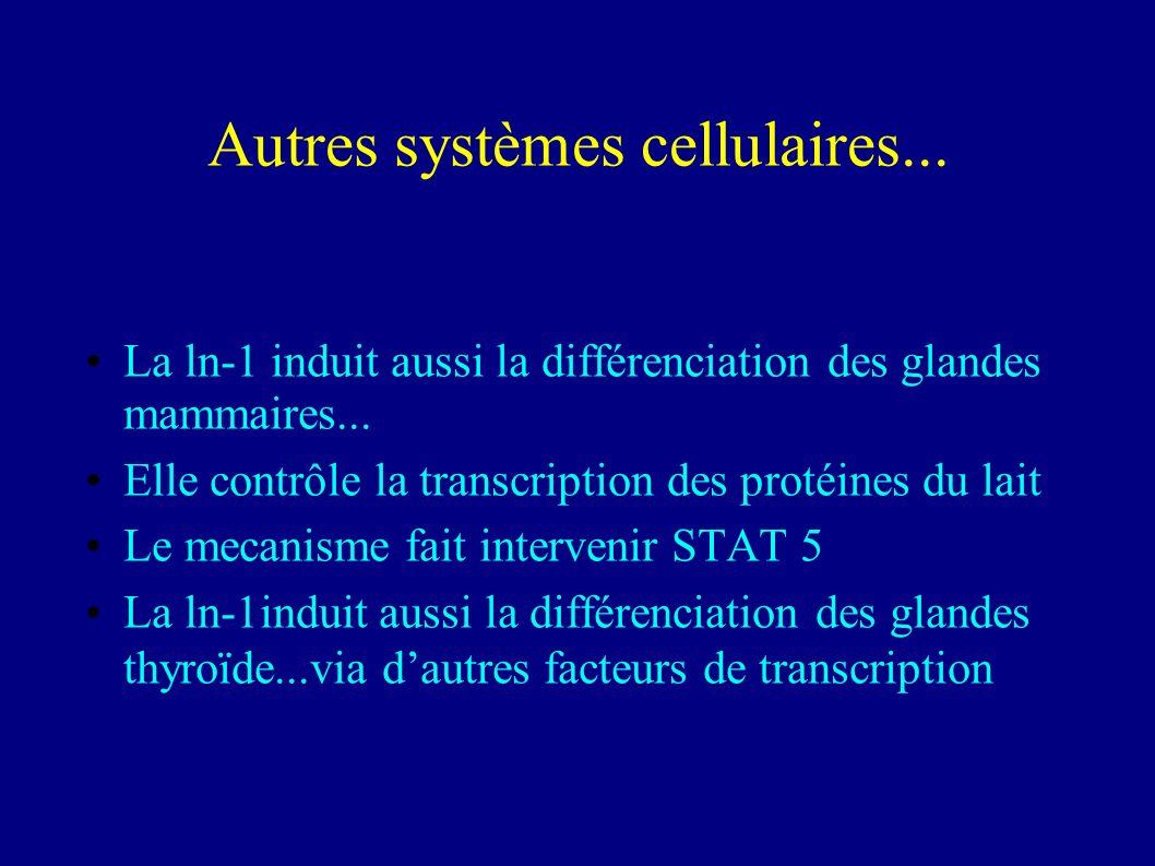 Autres systèmes cellulaires...