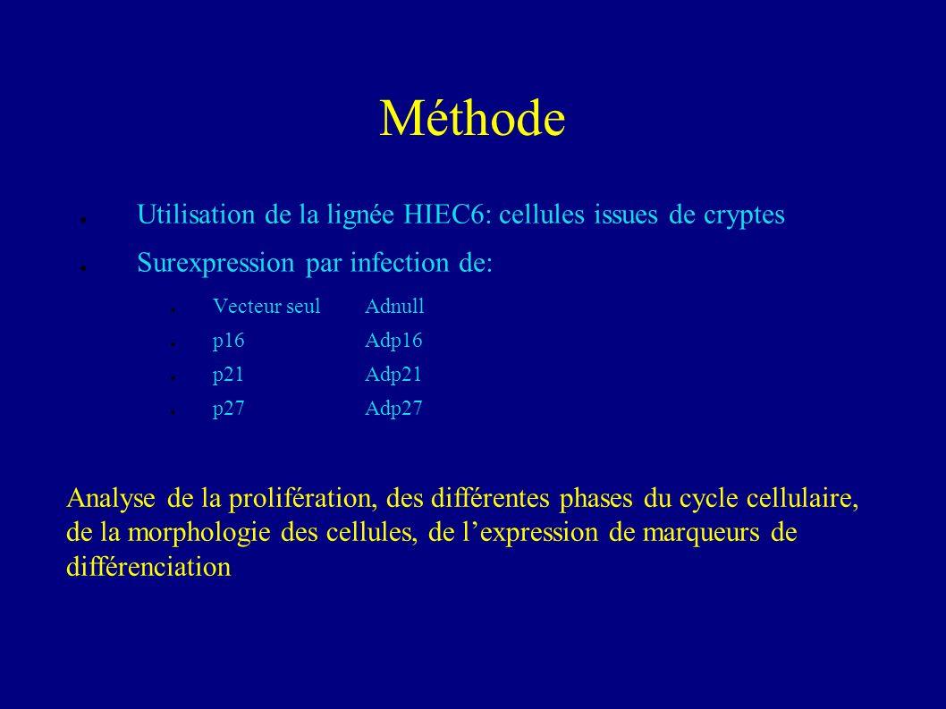 Méthode Utilisation de la lignée HIEC6: cellules issues de cryptes
