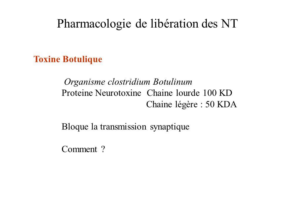 Pharmacologie de libération des NT