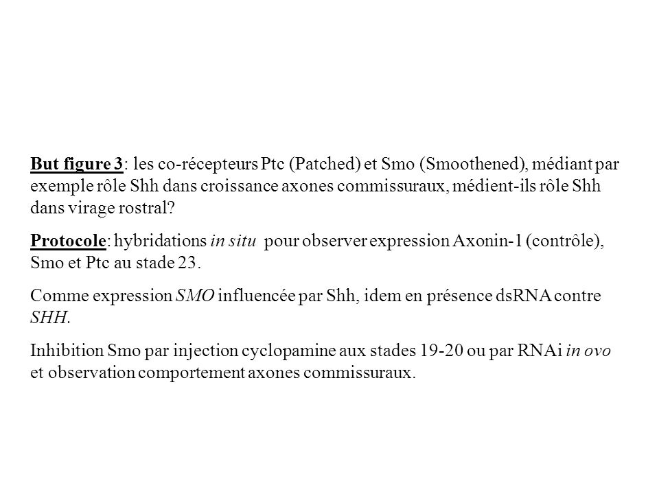 But figure 3: les co-récepteurs Ptc (Patched) et Smo (Smoothened), médiant par exemple rôle Shh dans croissance axones commissuraux, médient-ils rôle Shh dans virage rostral