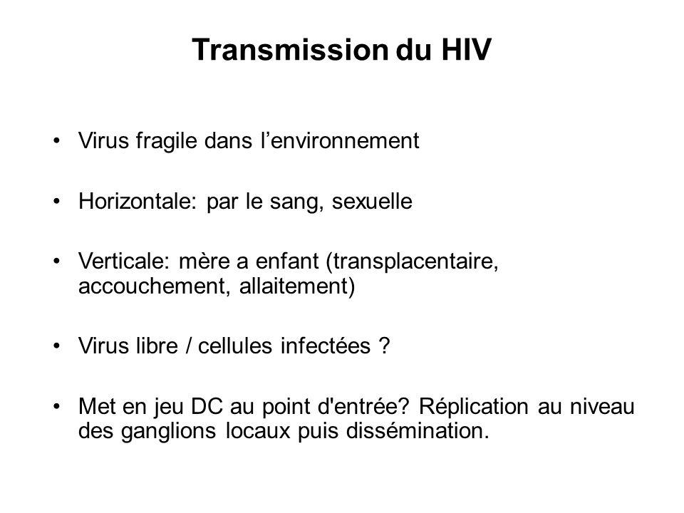 Transmission du HIV Virus fragile dans l'environnement