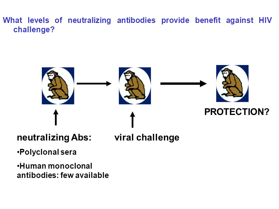 PROTECTION neutralizing Abs: viral challenge
