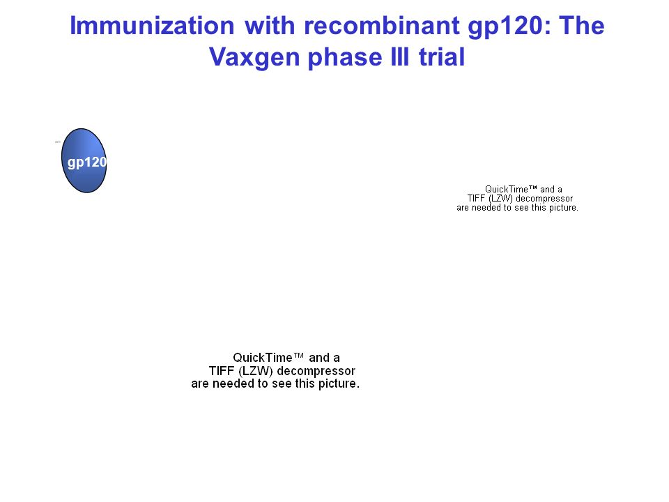 Immunization with recombinant gp120: The Vaxgen phase III trial