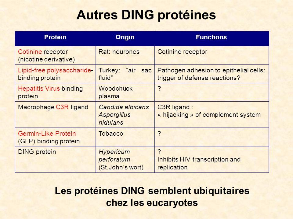 Les protéines DING semblent ubiquitaires