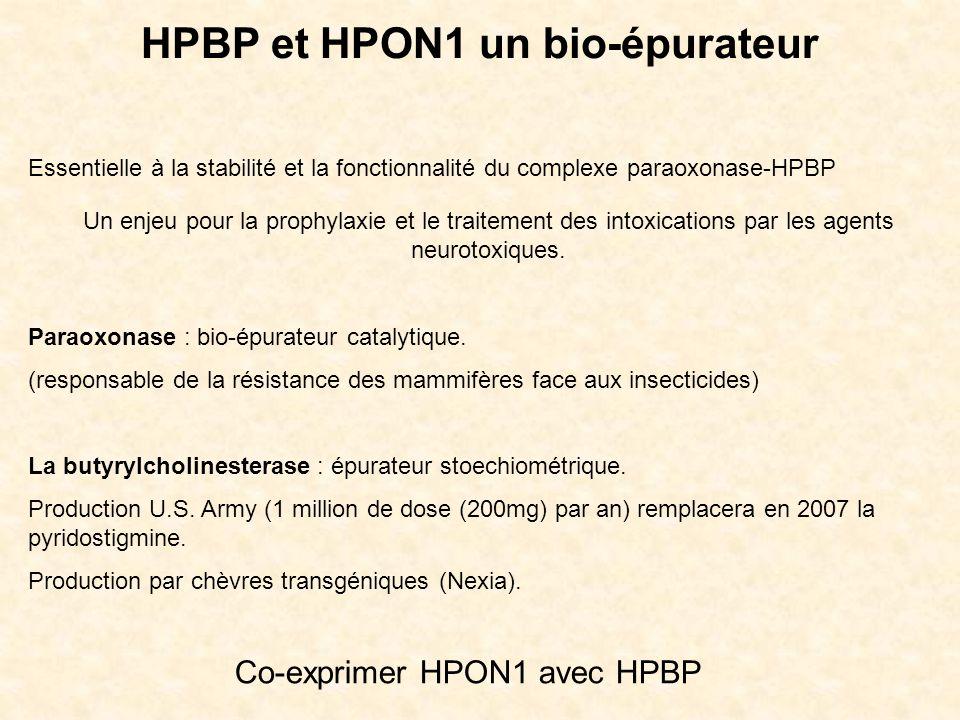 HPBP et HPON1 un bio-épurateur