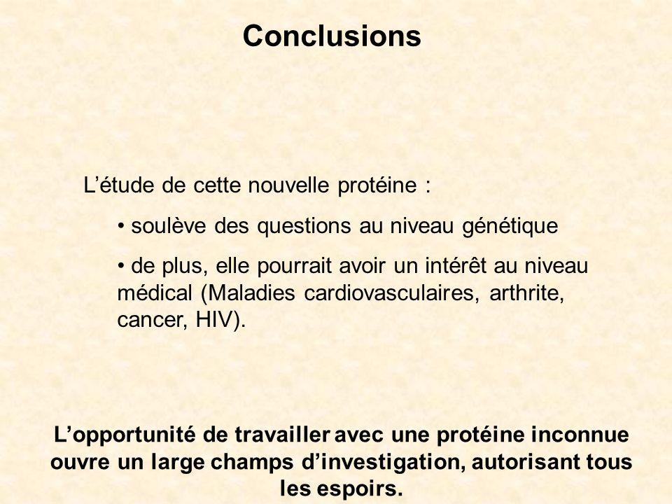 Conclusions L'étude de cette nouvelle protéine :