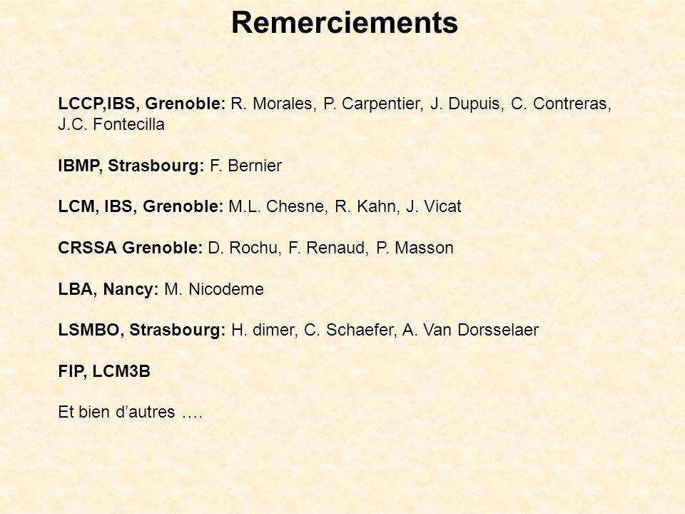 Remerciements LCCP,IBS, Grenoble: R. Morales, P. Carpentier, J. Dupuis, C. Contreras, J.C. Fontecilla.