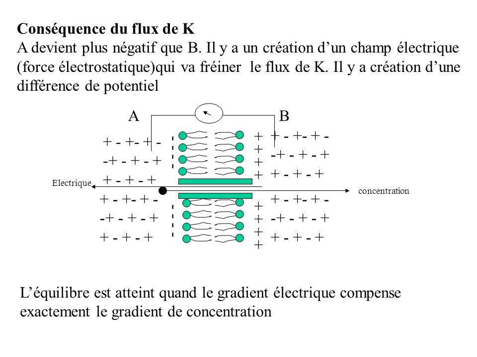 Conséquence du flux de K