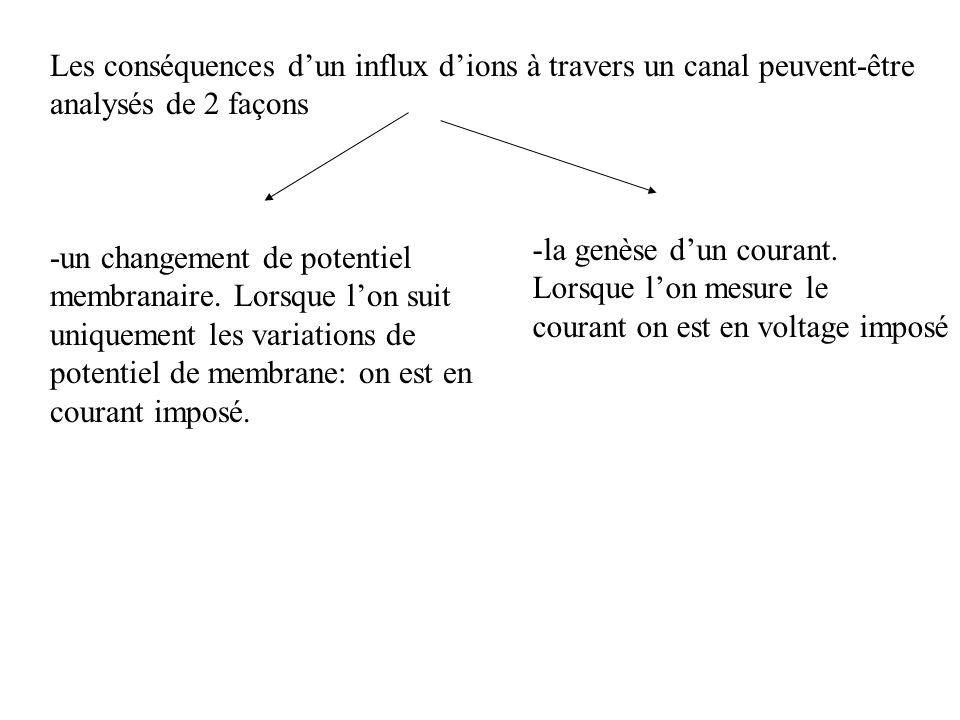 Les conséquences d'un influx d'ions à travers un canal peuvent-être