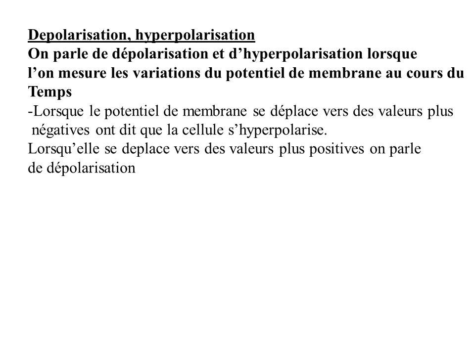 Depolarisation, hyperpolarisation