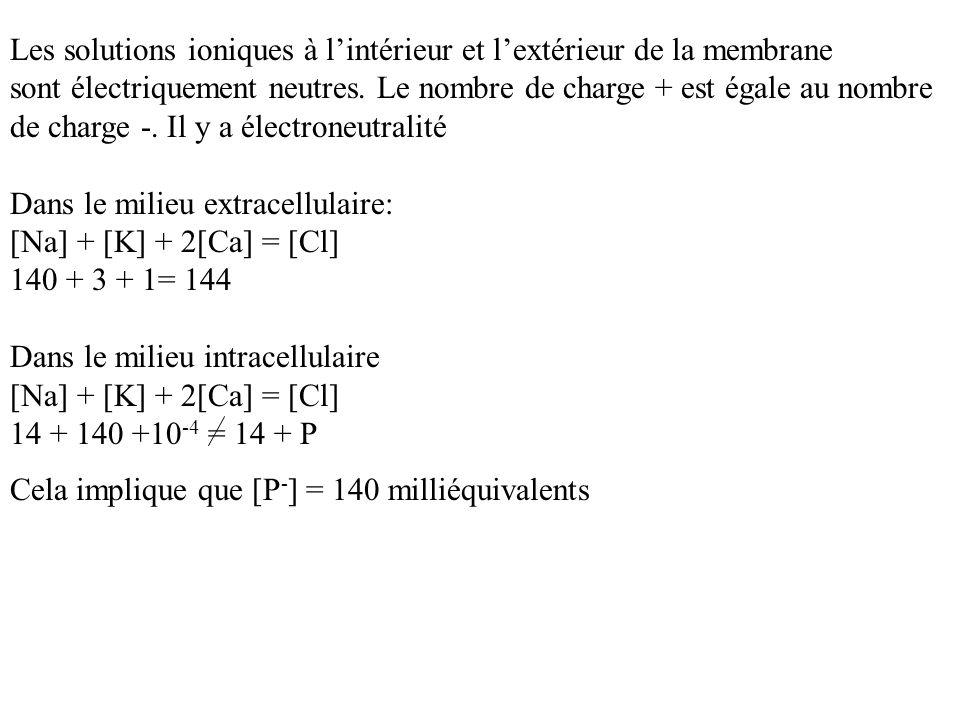 Les solutions ioniques à l'intérieur et l'extérieur de la membrane