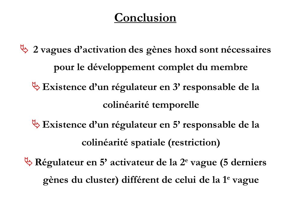 Conclusion 2 vagues d'activation des gènes hoxd sont nécessaires pour le développement complet du membre.