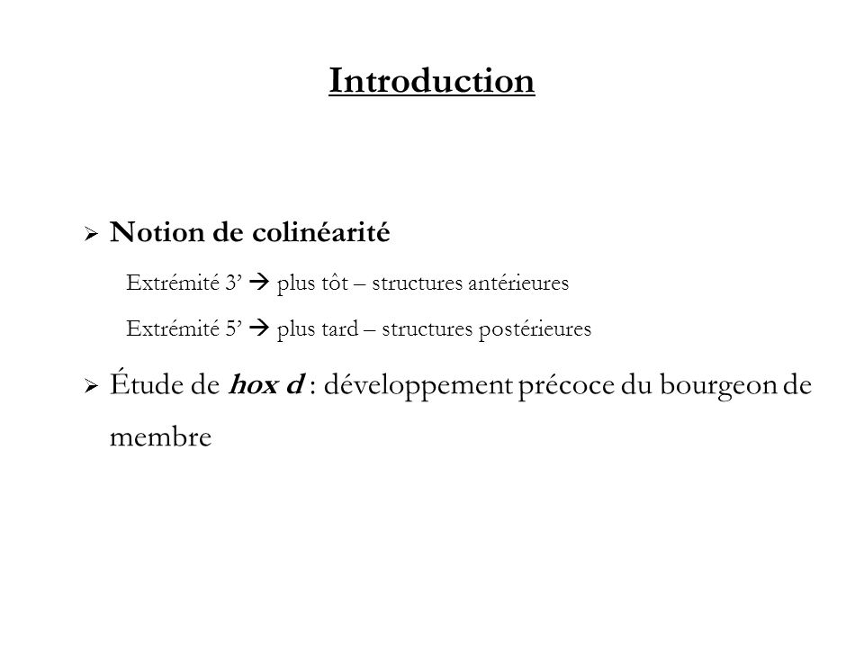 Introduction Notion de colinéarité
