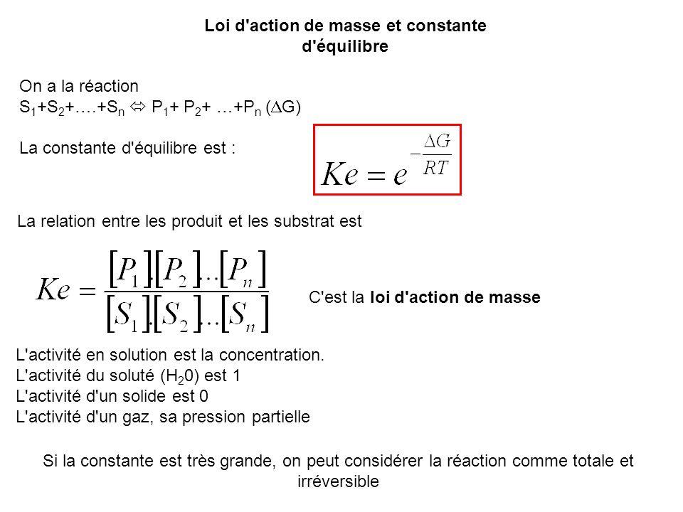 Loi d action de masse et constante d équilibre