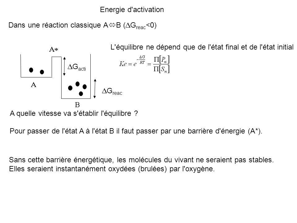 Energie d activation Dans une réaction classique AB (DGreac<0) L équilibre ne dépend que de l état final et de l état initial.