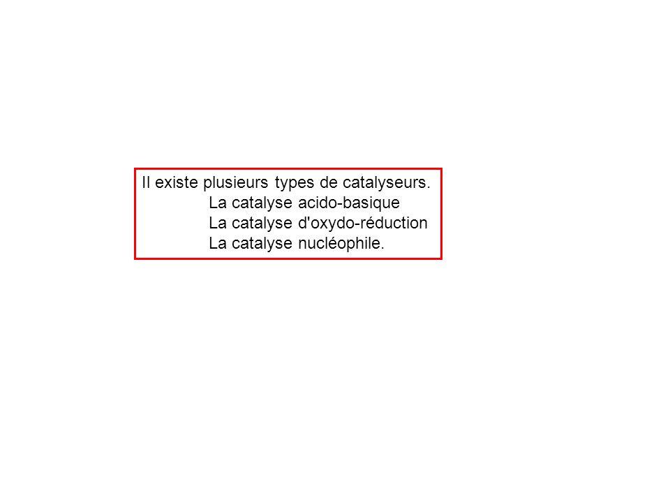 Il existe plusieurs types de catalyseurs.