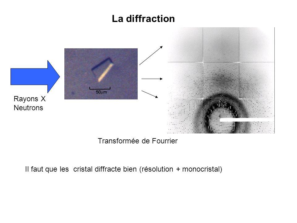 La diffraction Rayons X Neutrons Transformée de Fourrier
