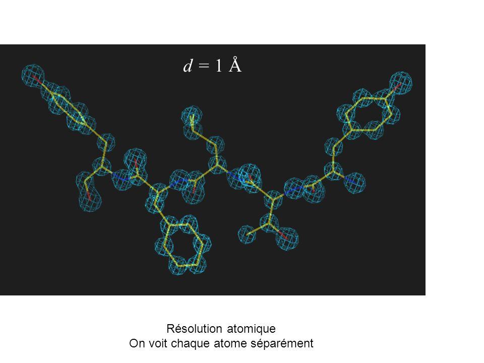 On voit chaque atome séparément