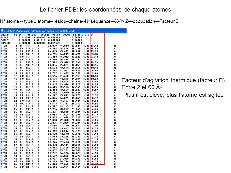 Le fichier PDB: les coordonnées de chaque atomes