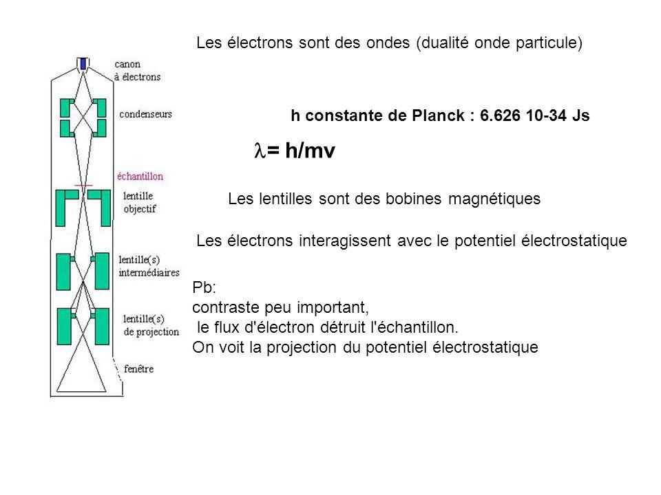 l= h/mv Les électrons sont des ondes (dualité onde particule)