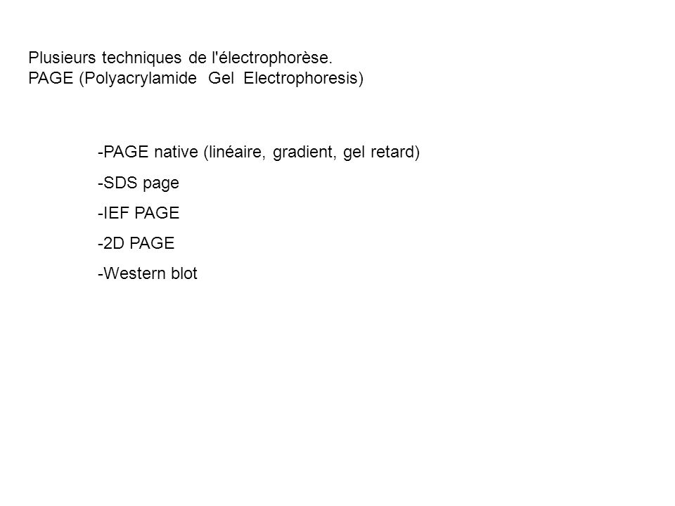 Plusieurs techniques de l électrophorèse.