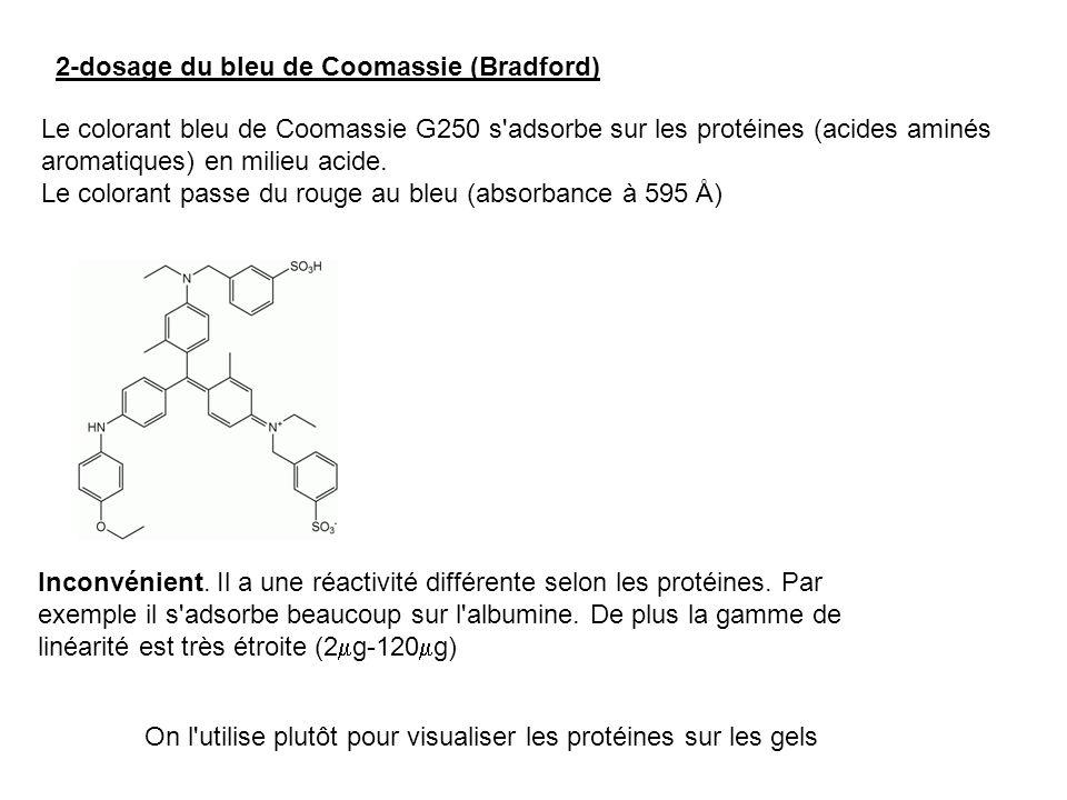 2-dosage du bleu de Coomassie (Bradford)