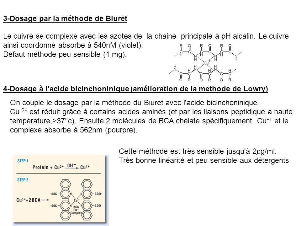 3-Dosage par la méthode de Biuret