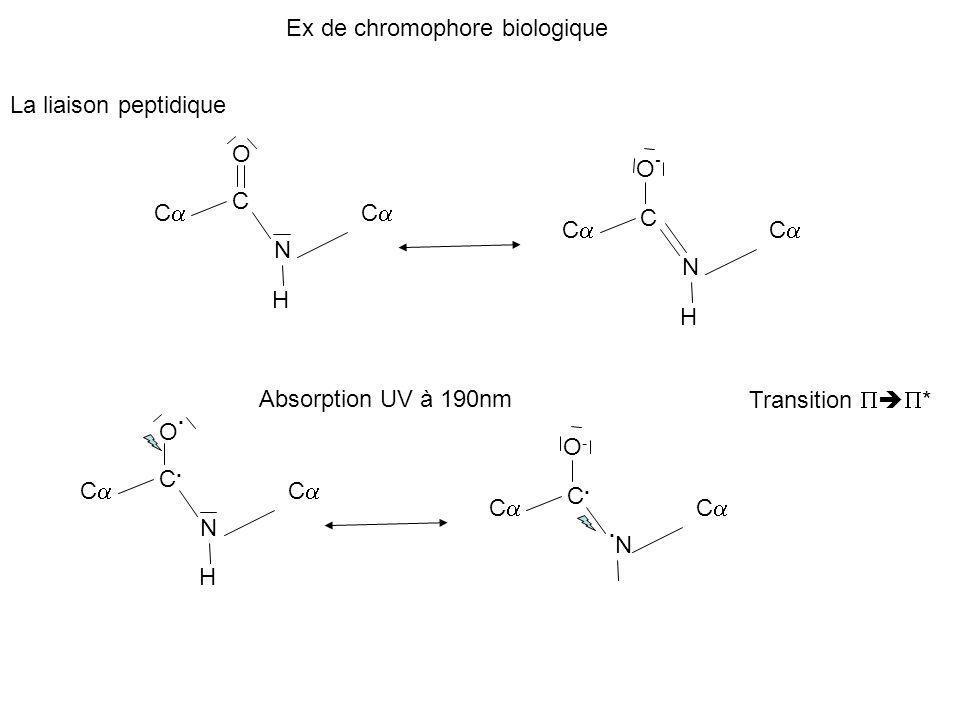 .N Ex de chromophore biologique La liaison peptidique O O- C Ca Ca C