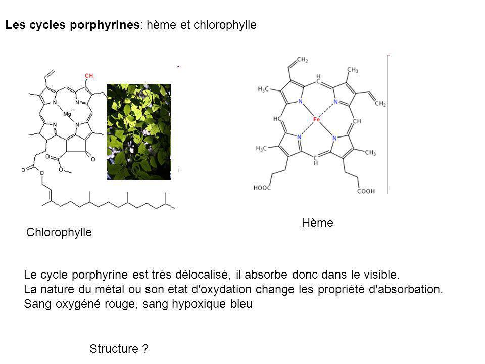 Les cycles porphyrines: hème et chlorophylle