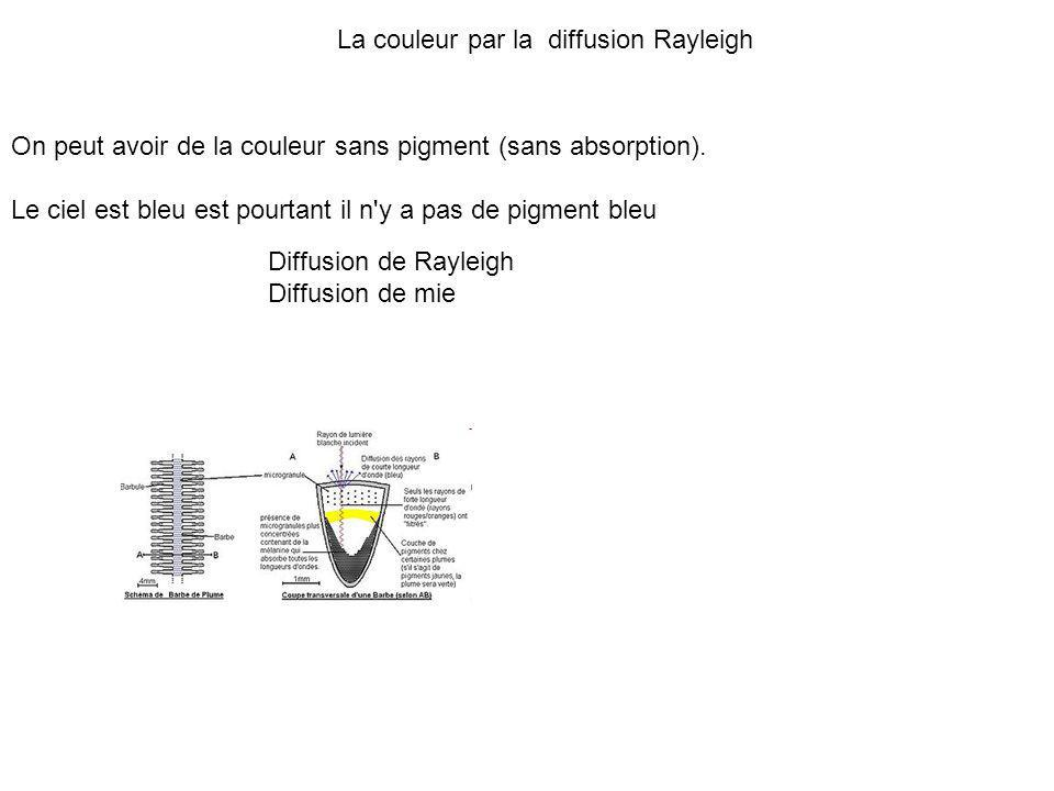 La couleur par la diffusion Rayleigh