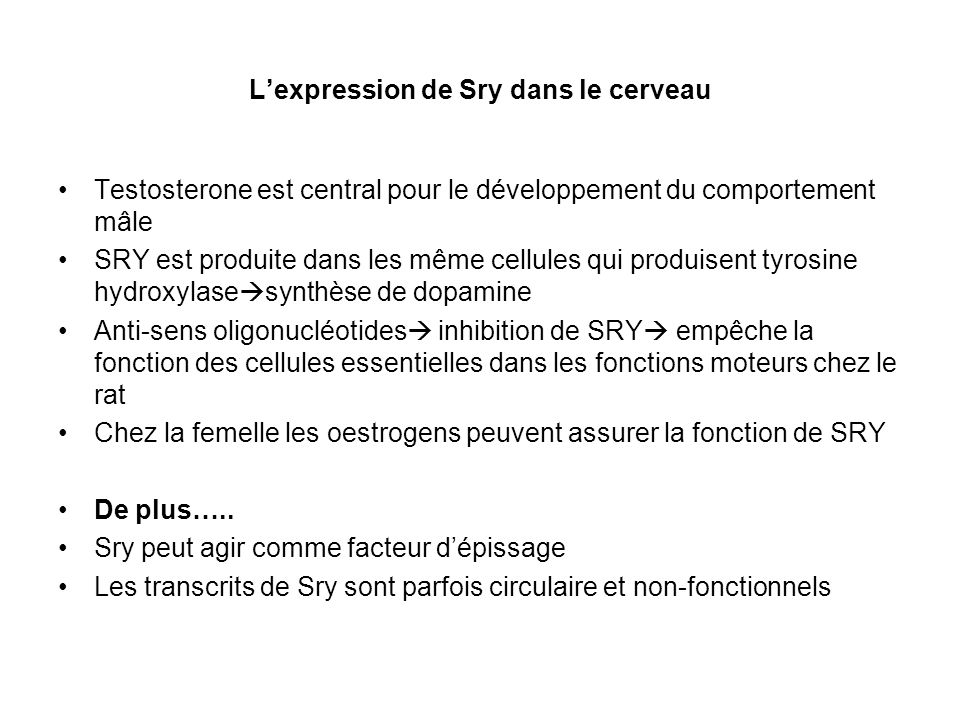 L'expression de Sry dans le cerveau