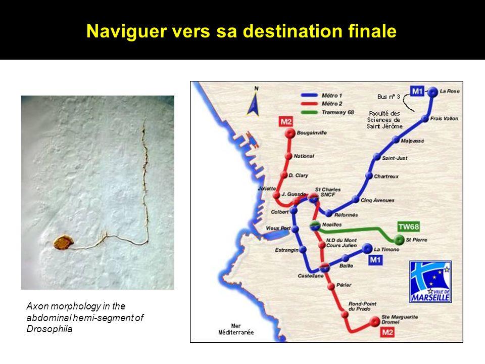 Naviguer vers sa destination finale