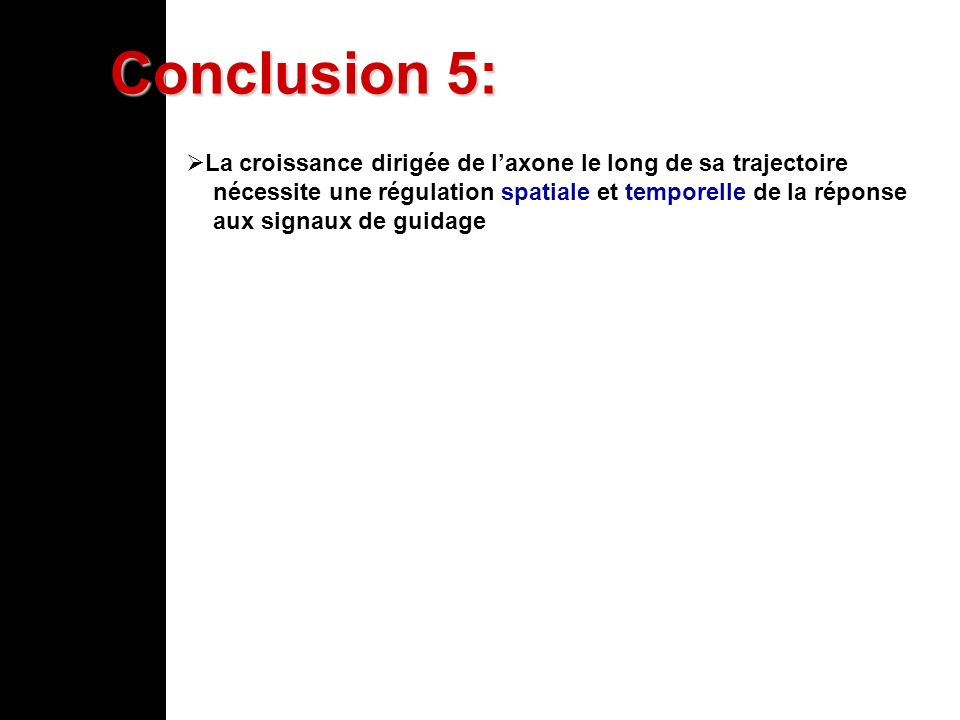 Conclusion 5:La croissance dirigée de l'axone le long de sa trajectoire. nécessite une régulation spatiale et temporelle de la réponse.