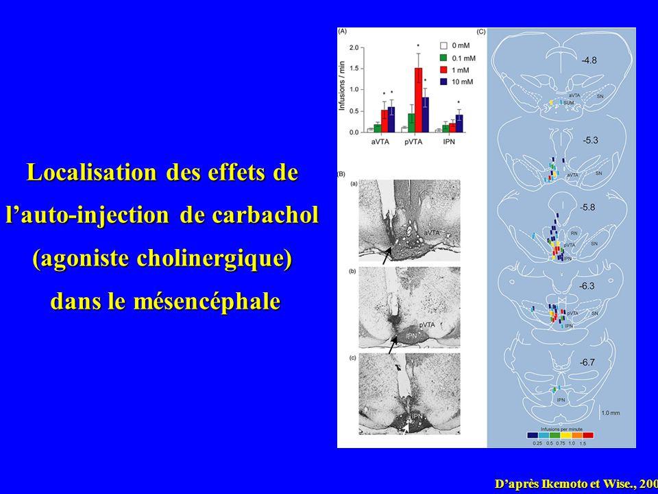 Localisation des effets de l'auto-injection de carbachol