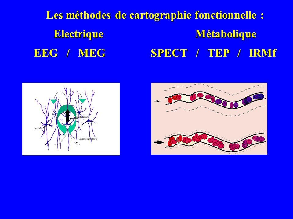 Les méthodes de cartographie fonctionnelle : Electrique Métabolique