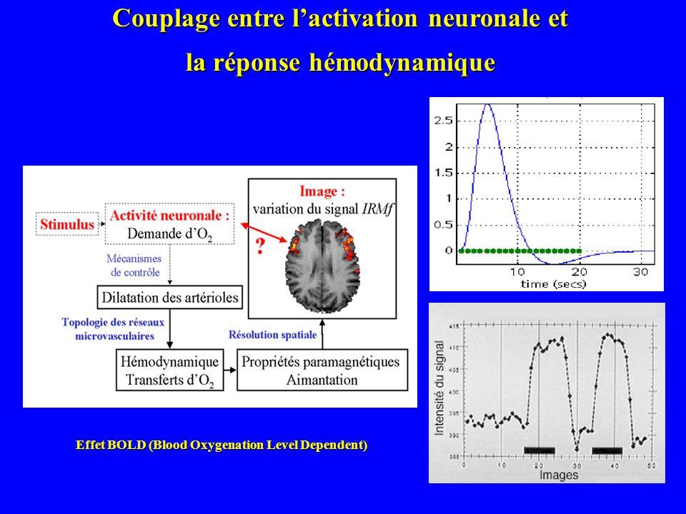 Couplage entre l'activation neuronale et la réponse hémodynamique