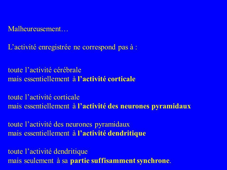 Malheureusement…L'activité enregistrée ne correspond pas à : toute l'activité cérébrale. mais essentiellement à l'activité corticale.