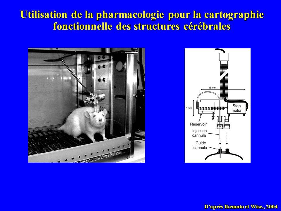 Utilisation de la pharmacologie pour la cartographie fonctionnelle des structures cérébrales
