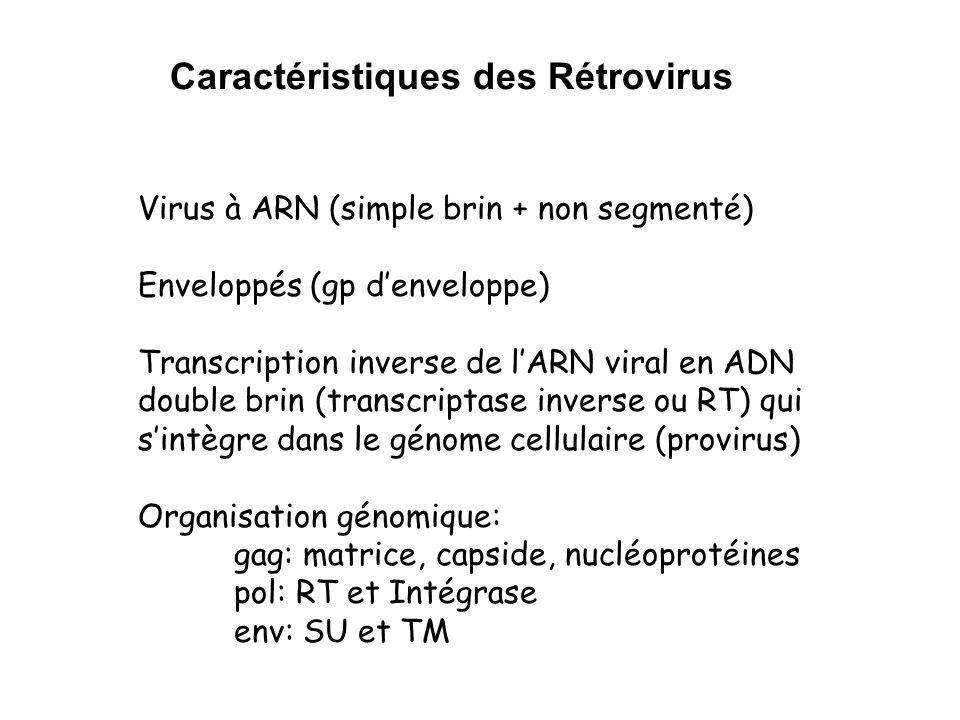 Caractéristiques des Rétrovirus