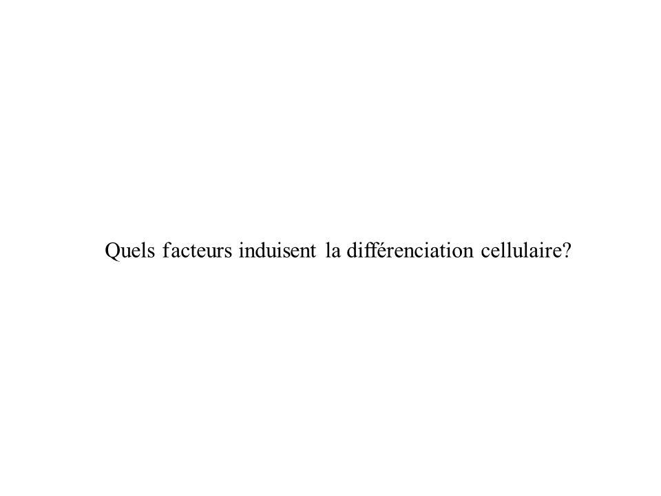 Quels f acteurs induisent la différenciation cellulaire